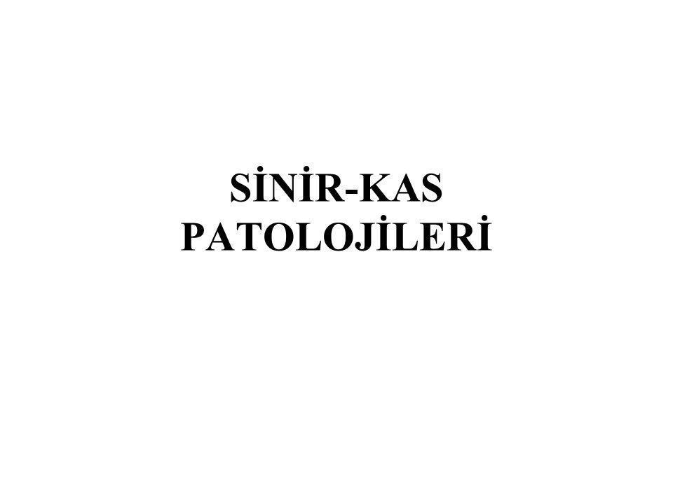 SİNİR-KAS PATOLOJİLERİ