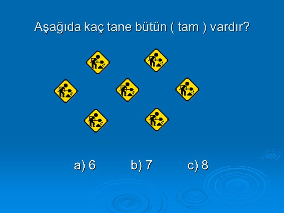 Aşağıda kaç tane bütün ( tam ) vardır? a) 6b) 7c) 8