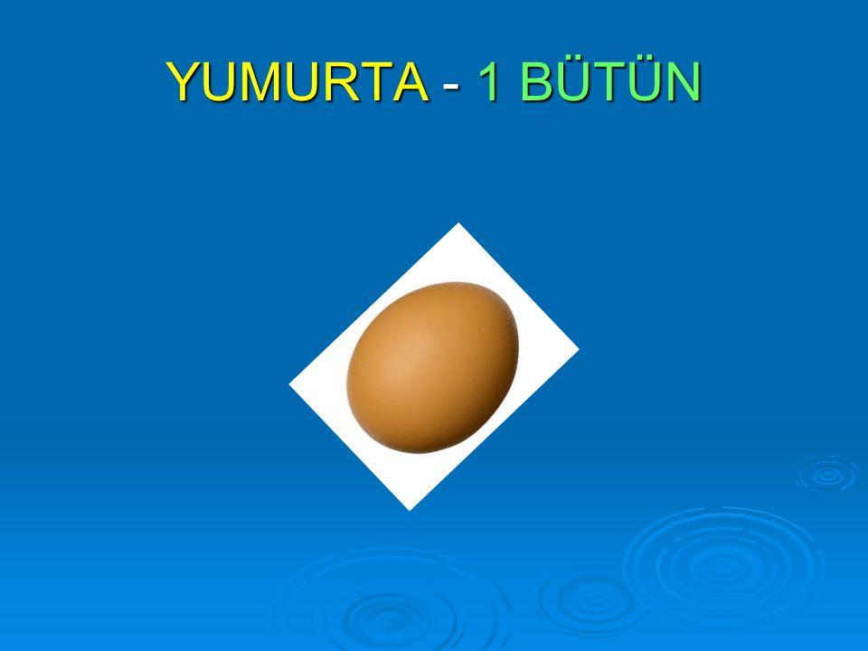 YUMURTA - 1 BÜTÜN