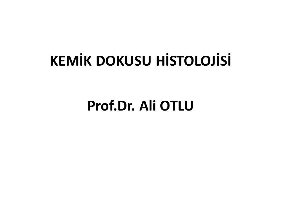 KEMİK DOKUSU HİSTOLOJİSİ Prof.Dr. Ali OTLU