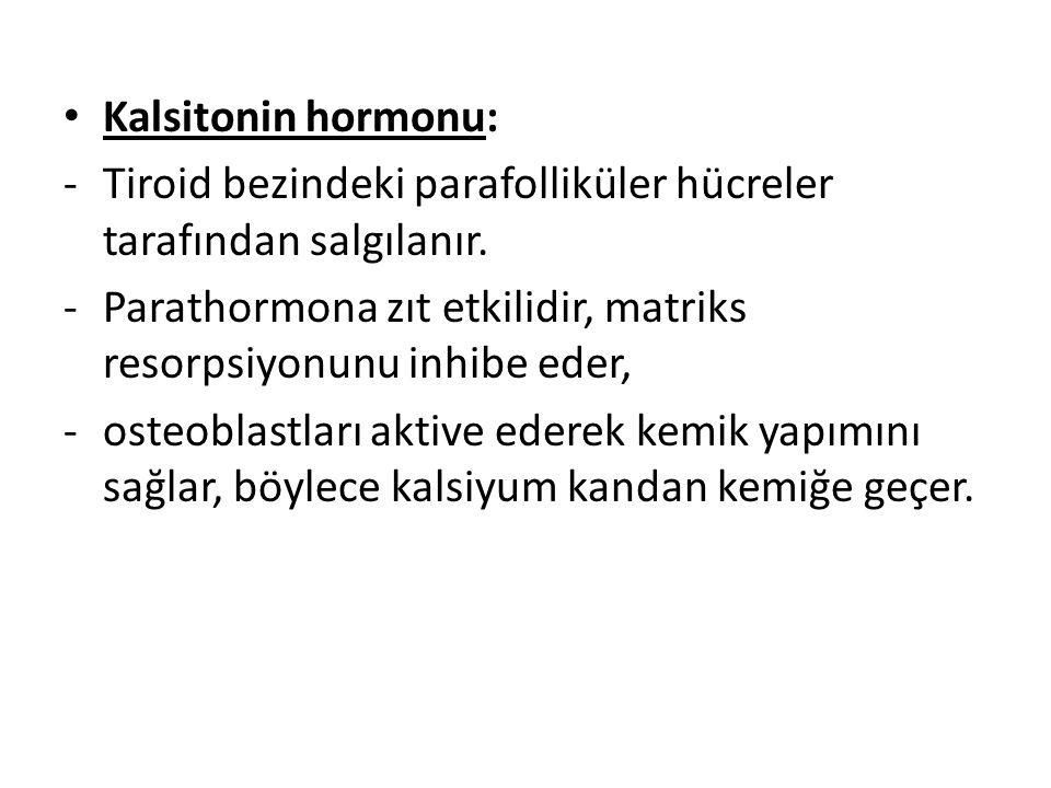 Kalsitonin hormonu: -Tiroid bezindeki parafolliküler hücreler tarafından salgılanır. -Parathormona zıt etkilidir, matriks resorpsiyonunu inhibe eder,