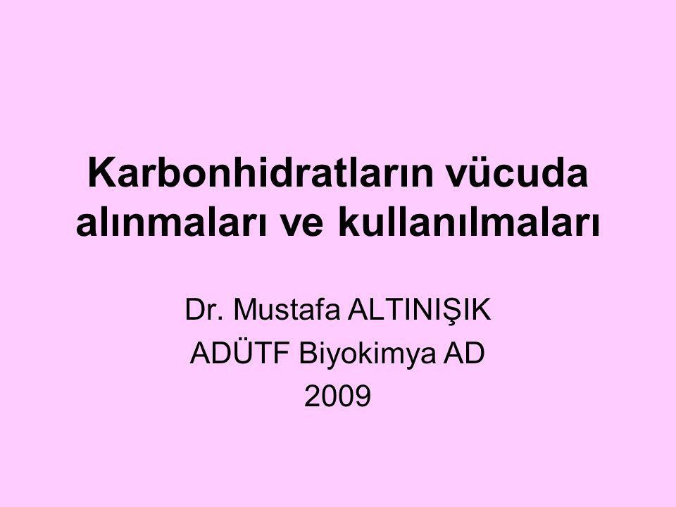 Karbonhidratların vücuda alınmaları ve kullanılmaları Dr. Mustafa ALTINIŞIK ADÜTF Biyokimya AD 2009
