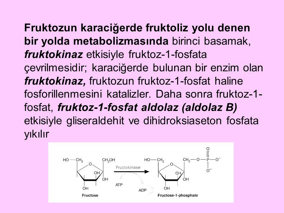 Fruktozun karaciğerde fruktoliz yolu denen bir yolda metabolizmasında birinci basamak, fruktokinaz etkisiyle fruktoz-1-fosfata çevrilmesidir; karaciğe