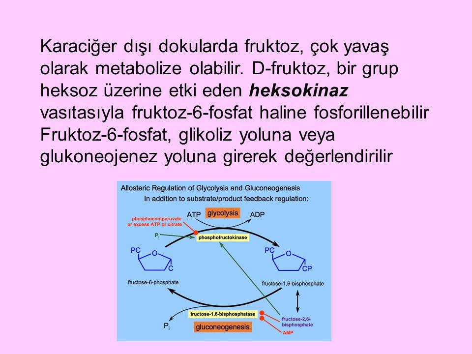Karaciğer dışı dokularda fruktoz, çok yavaş olarak metabolize olabilir. D-fruktoz, bir grup heksoz üzerine etki eden heksokinaz vasıtasıyla fruktoz-6-