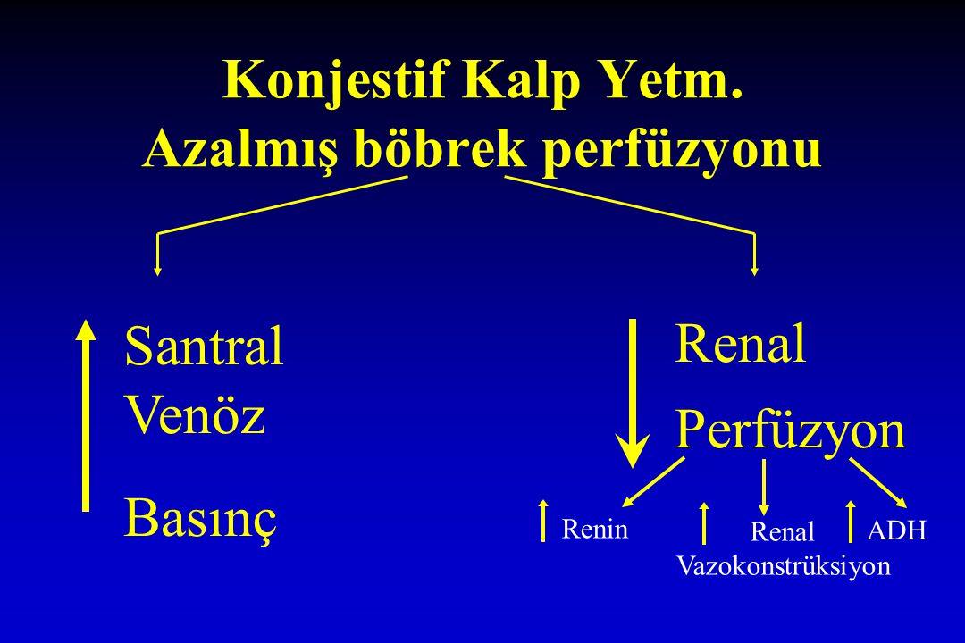 Konjestif Kalp Yetm. Azalmış böbrek perfüzyonu Santral Venöz Basınç Renal Perfüzyon ReninRenal Vazokonstrüksiyon ADH