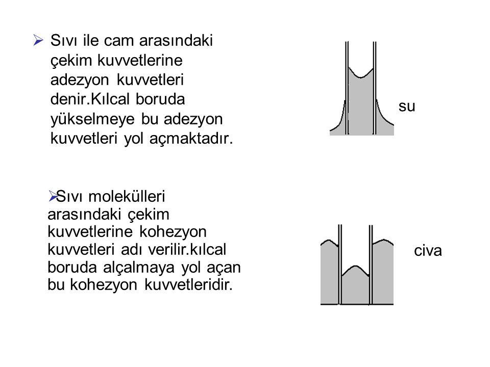  Sıvı ile cam arasındaki çekim kuvvetlerine adezyon kuvvetleri denir.Kılcal boruda yükselmeye bu adezyon kuvvetleri yol açmaktadır. su civa  Sıvı mo