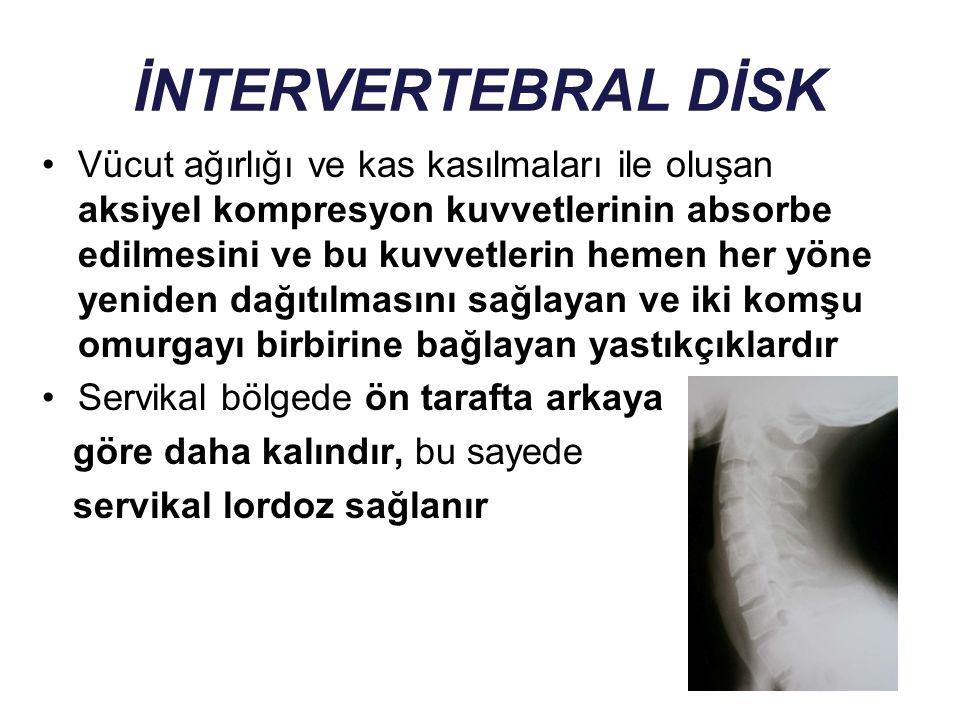 İNTERVERTEBRAL DİSK DEJENERASYONUNUN FİZYOPATOLOJİSİ Diskin beslenmesinde bozulma (O 2 ksijen, besinler ve artıkların difüzyonunda) Disk yapısında mikromoleküler ve makromoleküler düzeyde değişiklikler NP'un progresif olarak semijelatinöz yapısı bozulur ve yüksekliğini kaybeder