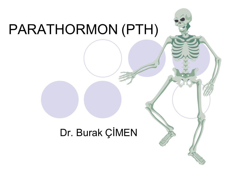 AMAÇ: Ekstrasellüler sıvı Ca konsantrasyonunu düzenleyen hormonlar hakkında bilgi sahibi olunması.