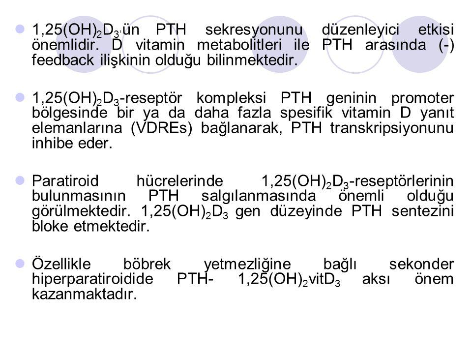 1,25(OH) 2 D 3' ün PTH sekresyonunu düzenleyici etkisi önemlidir.