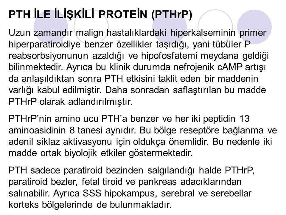 PTH İLE İLİŞKİLİ PROTEİN (PTHrP) Uzun zamandır malign hastalıklardaki hiperkalseminin primer hiperparatiroidiye benzer özellikler taşıdığı, yani tübüler P reabsorbsiyonunun azaldığı ve hipofosfatemi meydana geldiği bilinmektedir.