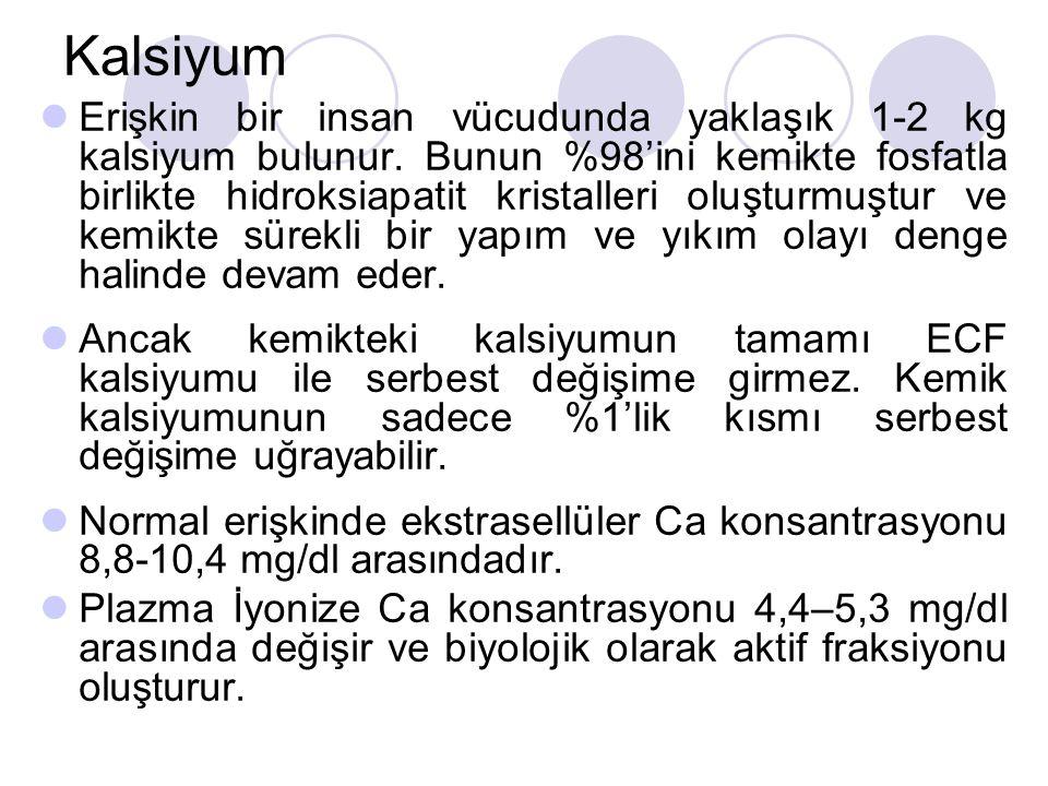 Kalsiyum Erişkin bir insan vücudunda yaklaşık 1-2 kg kalsiyum bulunur.