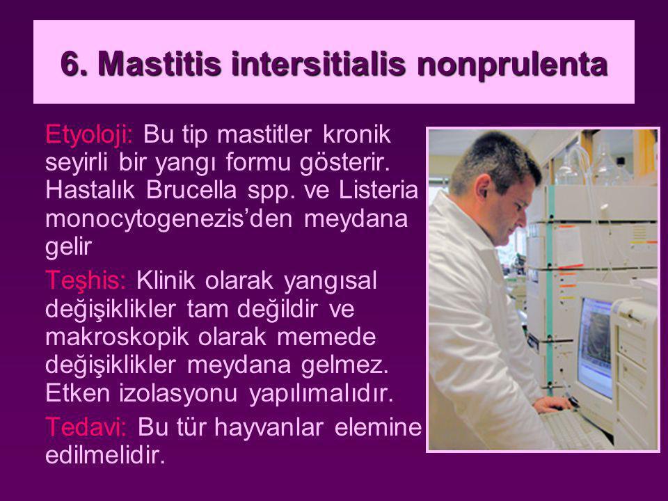 6. Mastitis intersitialis nonprulenta Etyoloji: Bu tip mastitler kronik seyirli bir yangı formu gösterir. Hastalık Brucella spp. ve Listeria monocytog