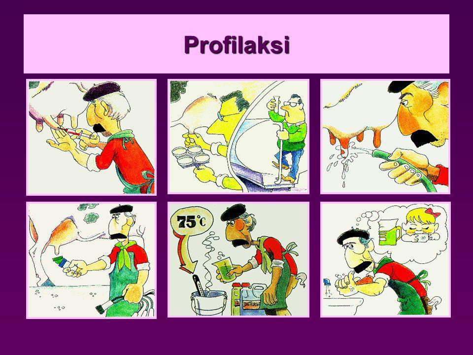 Profilaksi