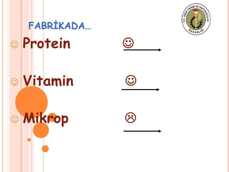 FABRİKADA… Protein Vitamin Mikrop 