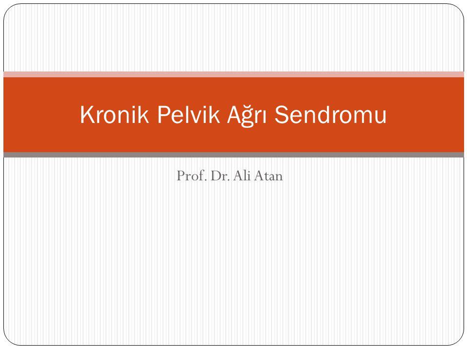 Prof. Dr. Ali Atan Kronik Pelvik Ağrı Sendromu
