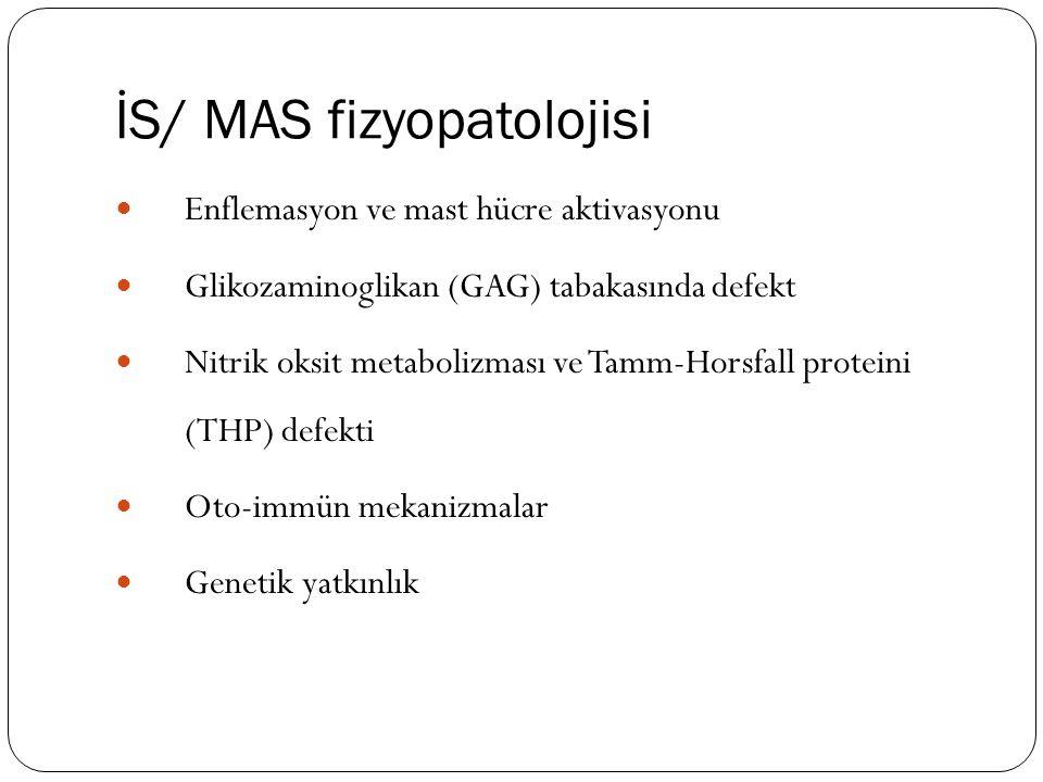 İS/ MAS fizyopatolojisi Enflemasyon ve mast hücre aktivasyonu Glikozaminoglikan (GAG) tabakasında defekt Nitrik oksit metabolizması ve Tamm-Horsfall p