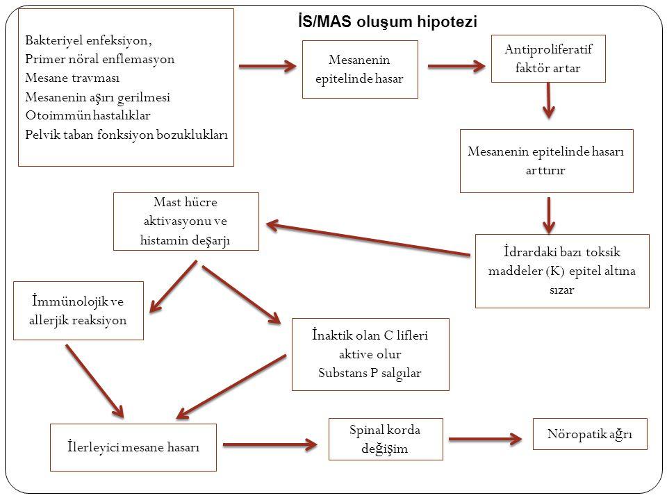 Bakteriyel enfeksiyon, Primer nöral enflemasyon Mesane travması Mesanenin a ş ırı gerilmesi Otoimmün hastalıklar Pelvik taban fonksiyon bozuklukları M