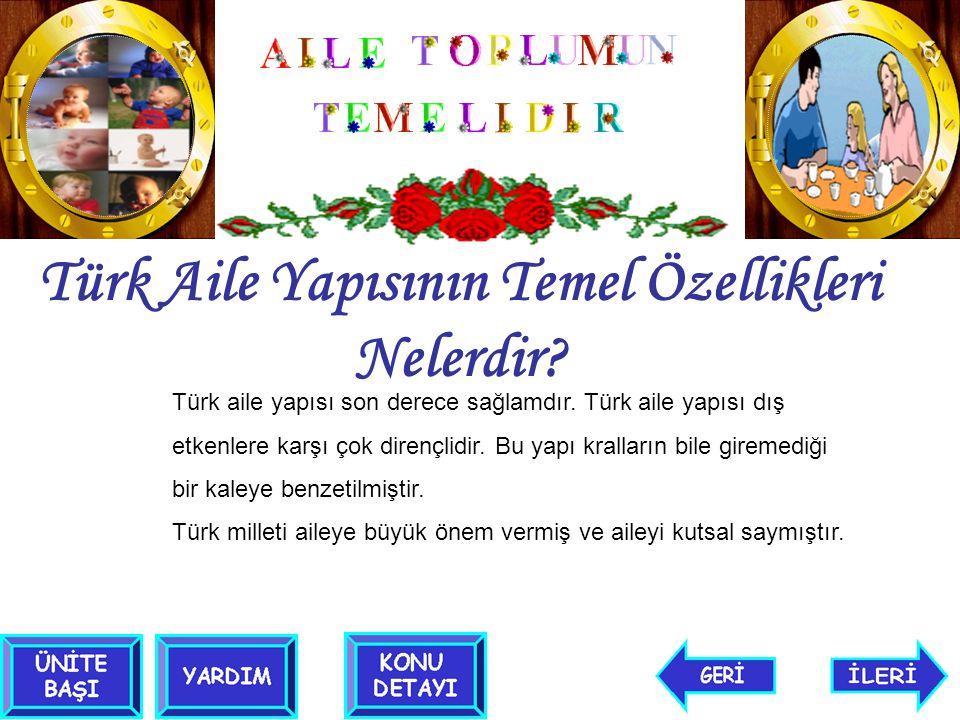 Türk Aile Yapısının Temel Özellikleri Nelerdir? Türk aile yapısı son derece sağlamdır. Türk aile yapısı dış etkenlere karşı çok dirençlidir. Bu yapı k