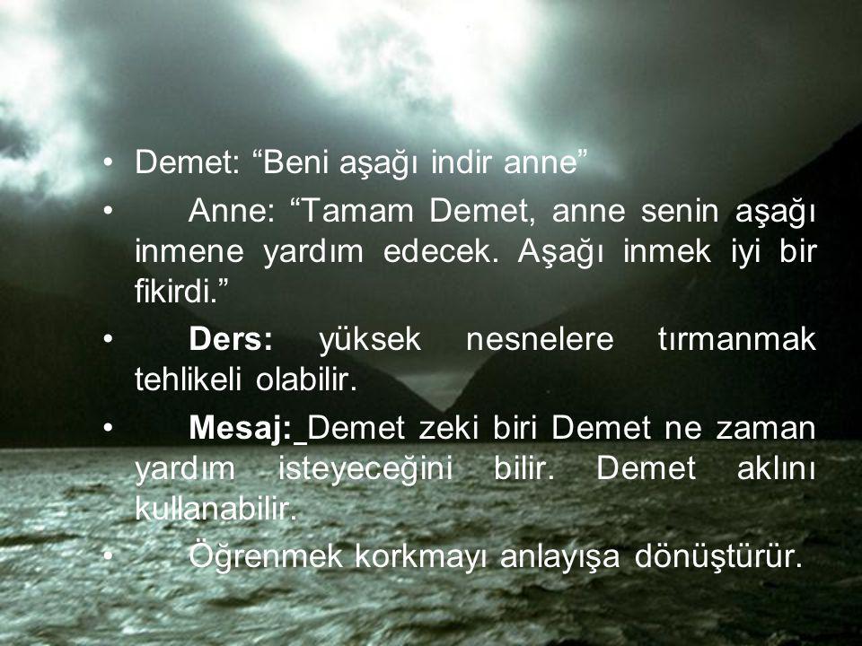 Demet: Beni aşağı indir anne Anne: Tamam Demet, anne senin aşağı inmene yardım edecek.