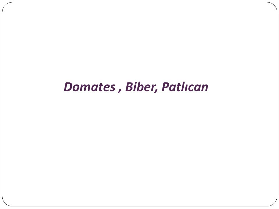 Domates, Biber, Patlıcan
