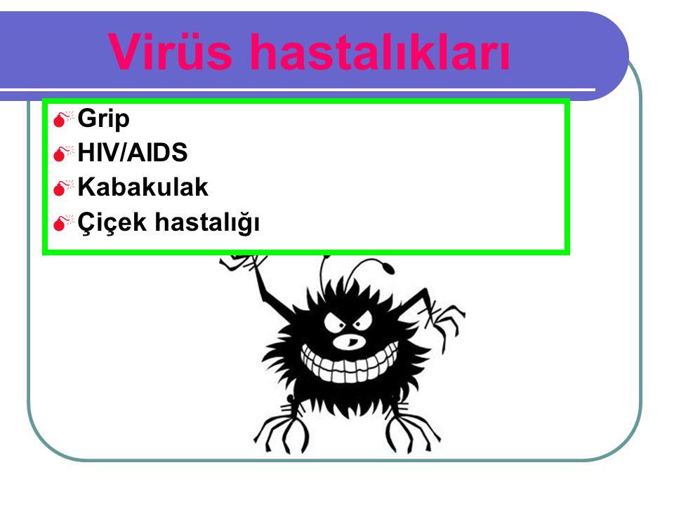 Virüs hastalıkları  Grip  HIV/AIDS  Kabakulak  Çiçek hastalığı