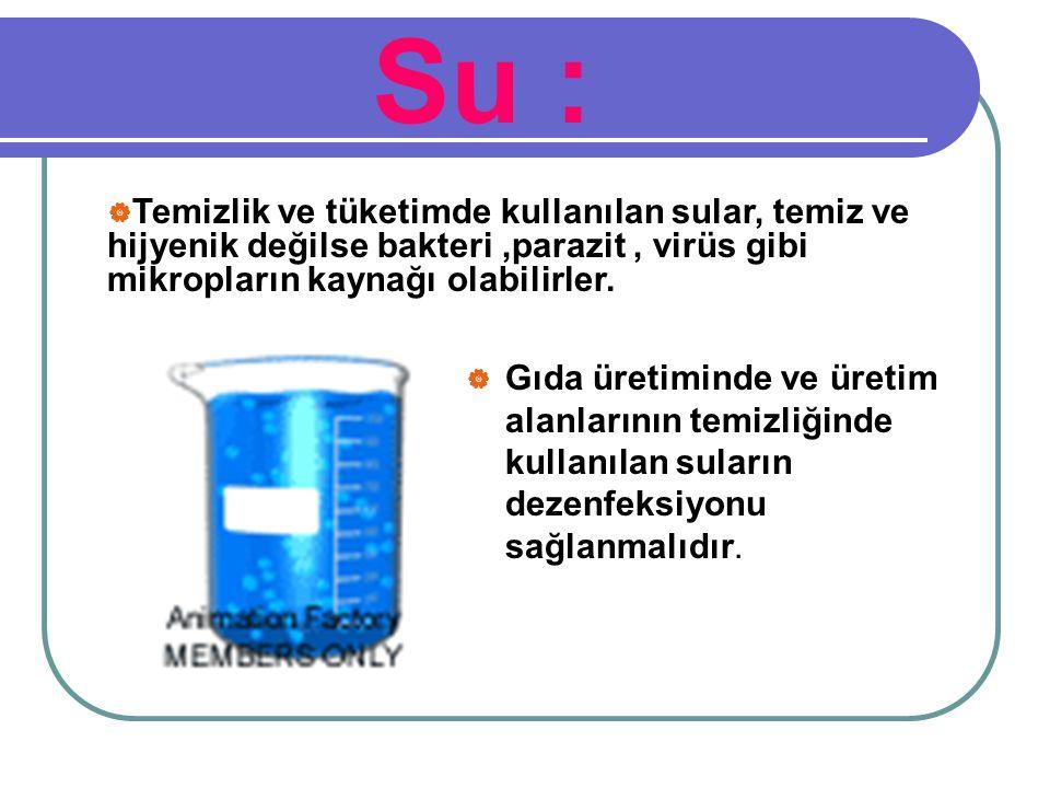 Su :  Gıda üretiminde ve üretim alanlarının temizliğinde kullanılan suların dezenfeksiyonu sağlanmalıdır.  Temizlik ve tüketimde kullanılan sular, t