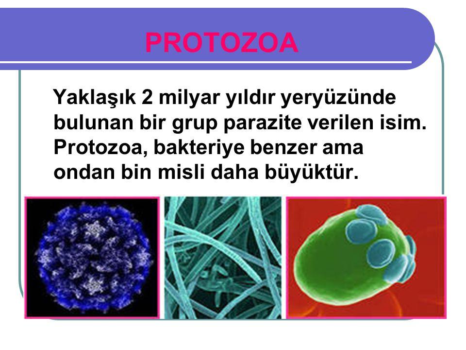  Mikroorganizmalar yüksek ısılarda ölürler. Mikroorganizmalar, soğukta ölmezler.