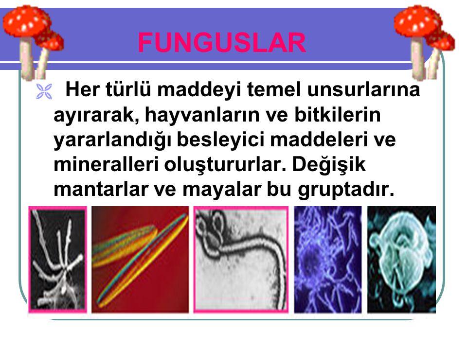 *Taşınmalarının Önlenmesi :  Mikropların, o anda bulundukları el, saç, ağız, burun, üst-baş gibi ortamlardan başka bir yere taşınmasıdır.