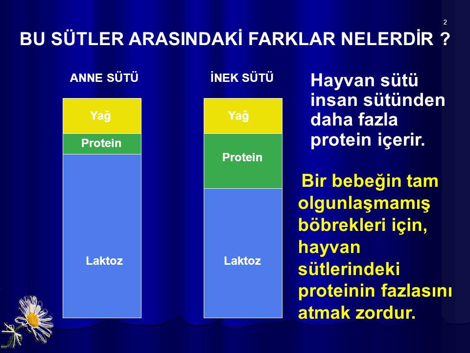 Protein BU SÜTLER ARASINDAKİ FARKLAR NELERDİR ? ANNE SÜTÜ İNEK SÜTÜ Laktoz Yağ 2 Hayvan sütü insan sütünden daha fazla protein içerir. Bir bebeğin tam