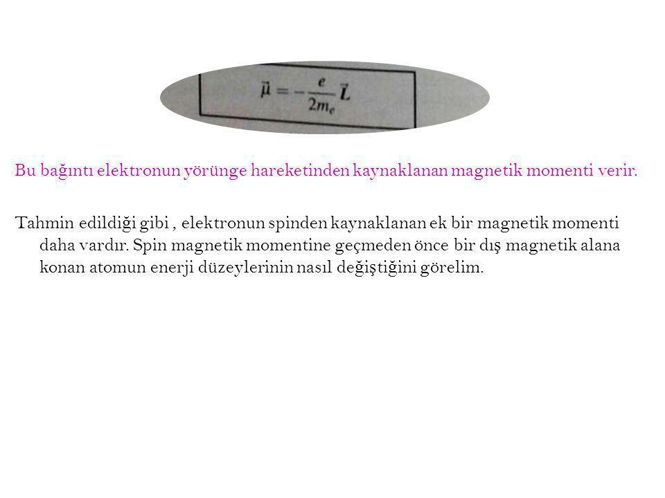 Bu ba ğ ıntı elektronun yörünge hareketinden kaynaklanan magnetik momenti verir. Tahmin edildi ğ i gibi, elektronun spinden kaynaklanan ek bir magneti