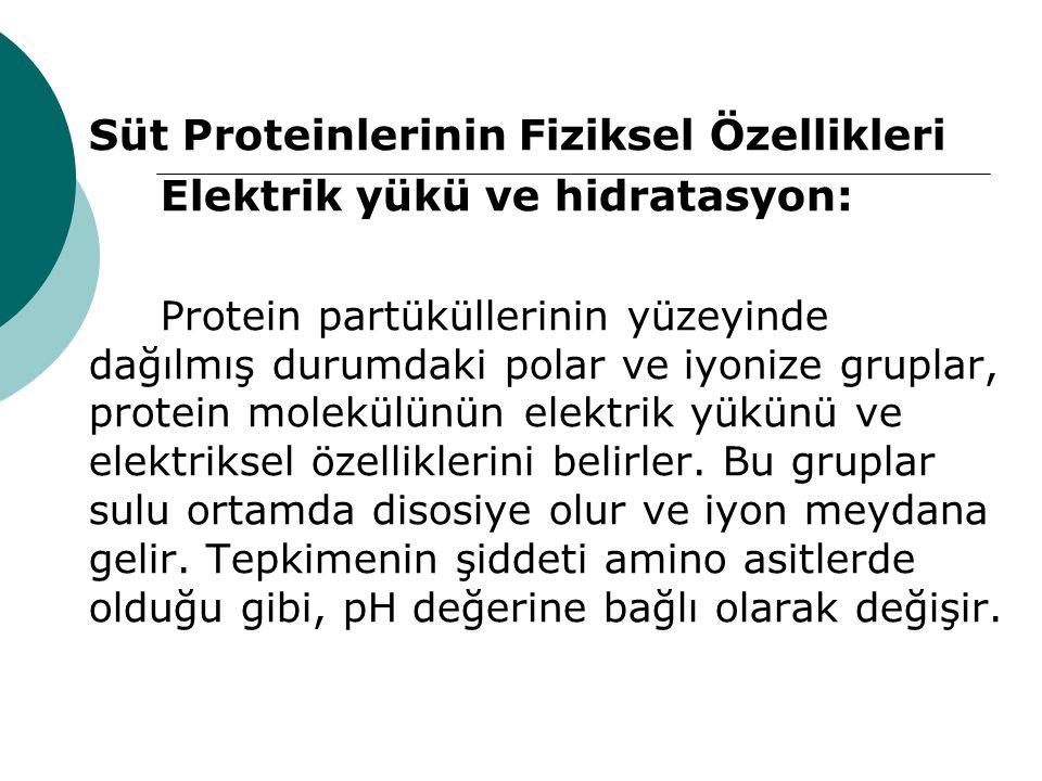 Süt Proteinlerinin Fiziksel Özellikleri Elektrik yükü ve hidratasyon: Protein partüküllerinin yüzeyinde dağılmış durumdaki polar ve iyonize gruplar, p