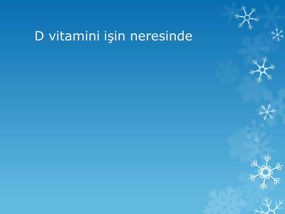 D vitamini işin neresinde