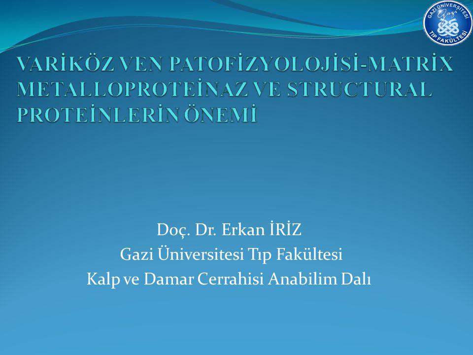 Doç. Dr. Erkan İRİZ Gazi Üniversitesi Tıp Fakültesi Kalp ve Damar Cerrahisi Anabilim Dalı