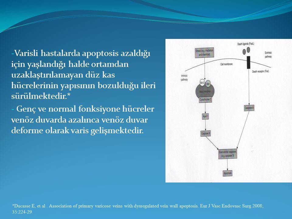 - Varisli hastalarda apoptosis azaldığı için yaşlandığı halde ortamdan uzaklaştırılamayan düz kas hücrelerinin yapısının bozulduğu ileri sürülmektedir