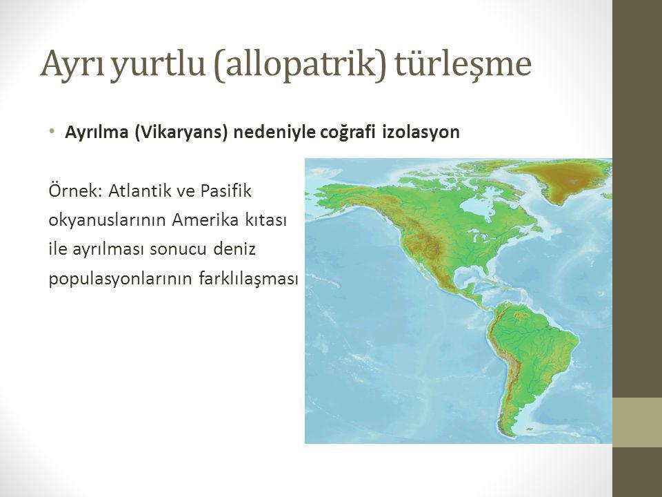 Ayrı yurtlu (allopatrik) türleşme Ayrılma (Vikaryans) nedeniyle coğrafi izolasyon Örnek: Atlantik ve Pasifik okyanuslarının Amerika kıtası ile ayrılma