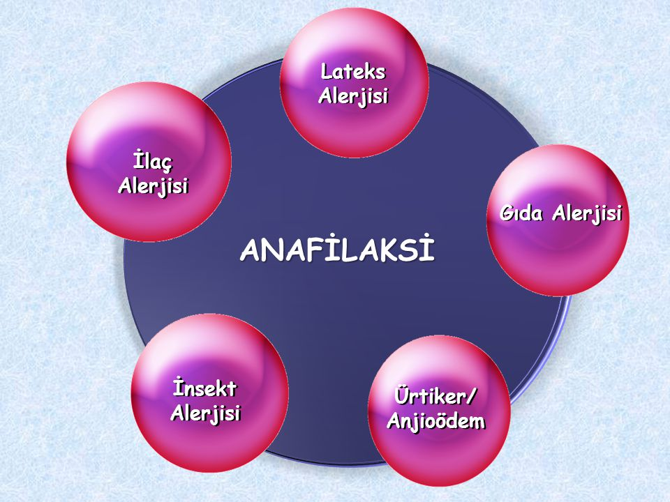 Lateks Alerjisi Ürtiker/ Anjioödem İlaç Alerjisi İnsekt Alerjisi ANAFİLAKSİ Gıda Alerjisi