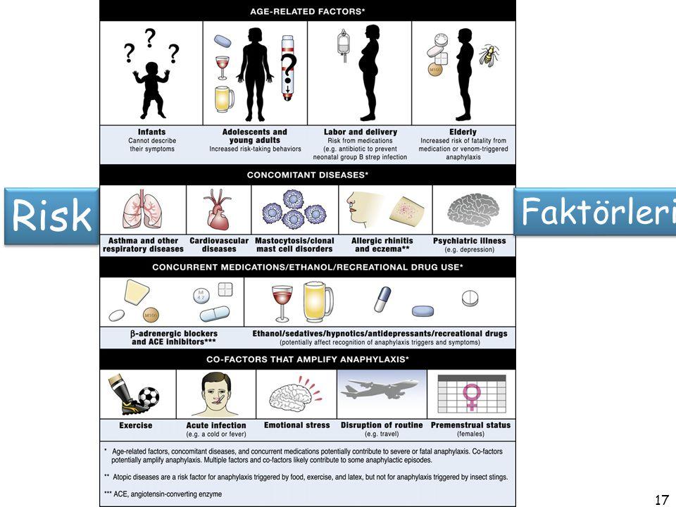 17 Risk Faktörleri