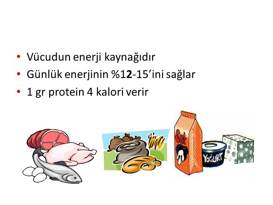 Vücudun enerji kaynağıdır Günlük enerjinin %12-15'ini sağlar 1 gr protein 4 kalori verir