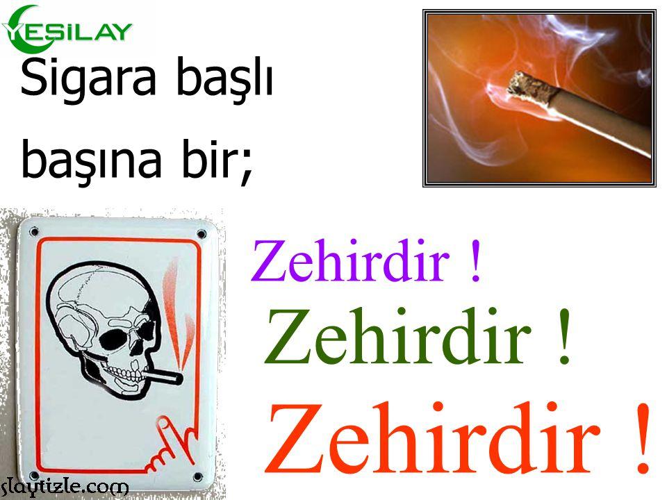 Sigara içersindeki en tehlikeli maddeler ise; NİKOTİN KATRAN KARBON MONOKSİT
