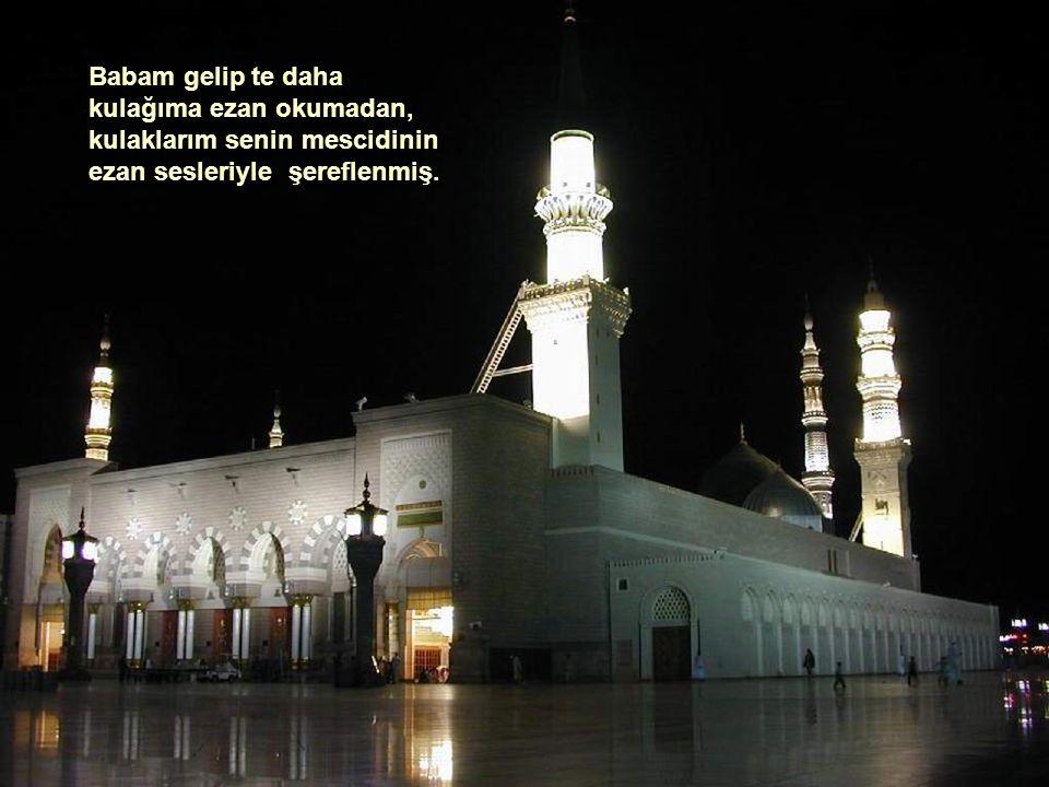 Bu yıl İzmir 17.