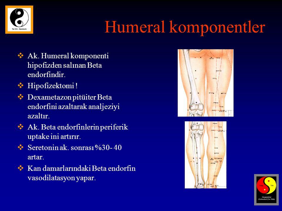 Humeral komponentler  Ak.Humeral komponenti hipofizden salınan Beta endorfindir.