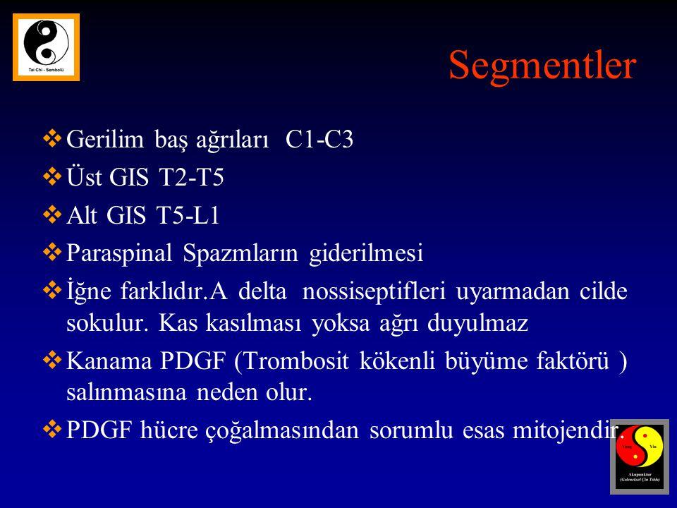 Segmentler  Gerilim baş ağrıları C1-C3  Üst GIS T2-T5  Alt GIS T5-L1  Paraspinal Spazmların giderilmesi  İğne farklıdır.A delta nossiseptifleri uyarmadan cilde sokulur.