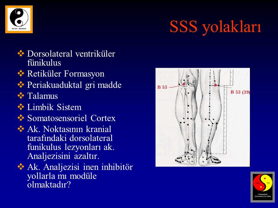 SSS yolakları  Dorsolateral ventriküler fünikulus  Retiküler Formasyon  Periakuaduktal gri madde  Talamus  Limbik Sistem  Somatosensoriel Cortex  Ak.