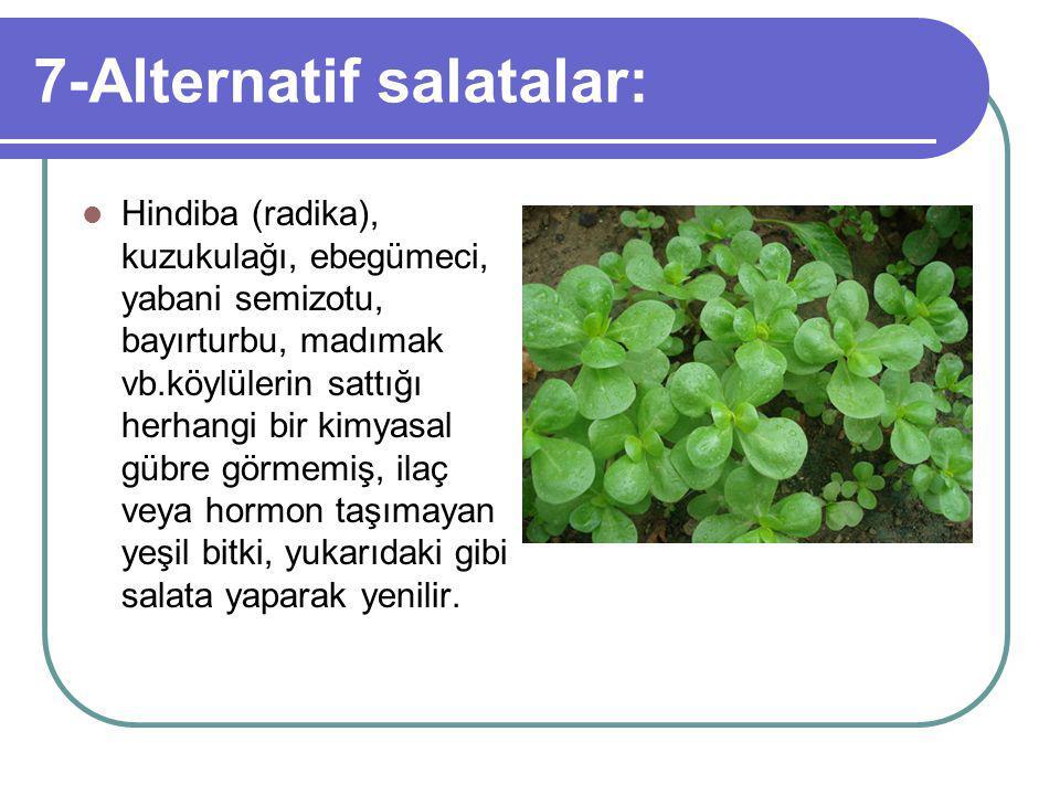 7-Alternatif salatalar: Hindiba (radika), kuzukulağı, ebegümeci, yabani semizotu, bayırturbu, madımak vb.köylülerin sattığı herhangi bir kimyasal gübre görmemiş, ilaç veya hormon taşımayan yeşil bitki, yukarıdaki gibi salata yaparak yenilir.