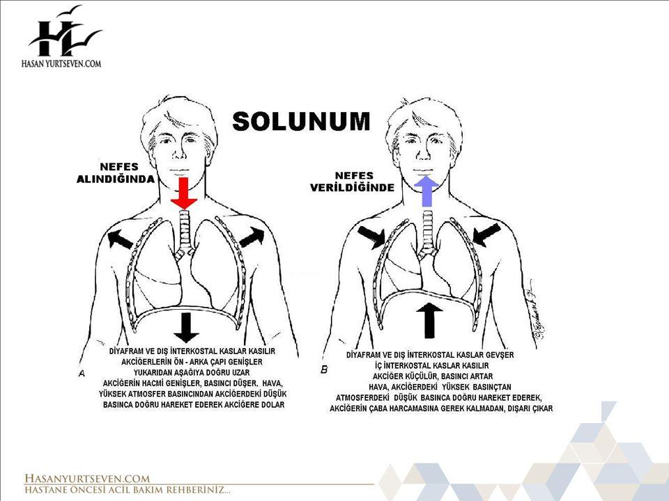SİSTEMİK HASTALIKLAR Sepsis Hipovolemi Şok Nöromusküler hastalıklar İntoksikasyonlar Metabolik hastalıklar