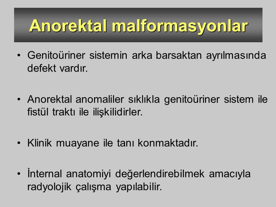 Anorektal malformasyonlar Genitoüriner sistemin arka barsaktan ayrılmasında defekt vardır. Anorektal anomaliler sıklıkla genitoüriner sistem ile fistü