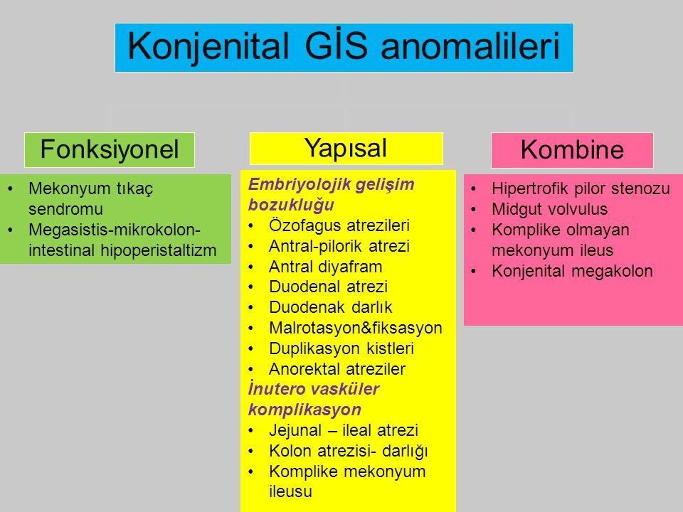 Konjenital GİS anomalileri Fonksiyonel Yapısal Kombine Embriyolojik gelişim bozukluğu Özofagus atrezileri Antral-pilorik atrezi Antral diyafram Duoden
