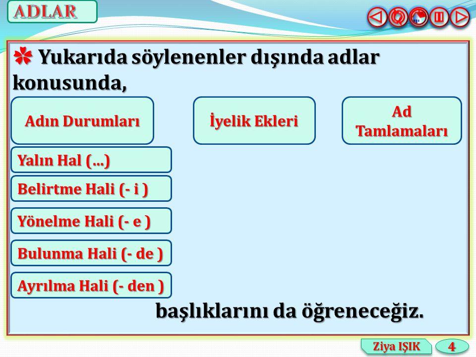 55 Ziya IŞIK