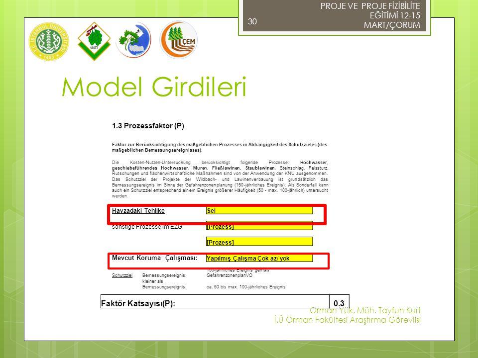 Model Girdileri 1.3 Prozessfaktor (P) Faktor zur Berücksichtigung des maßgeblichen Prozesses in Abhängigkeit des Schutzzieles (des maßgeblichen Bemessungsereignisses).