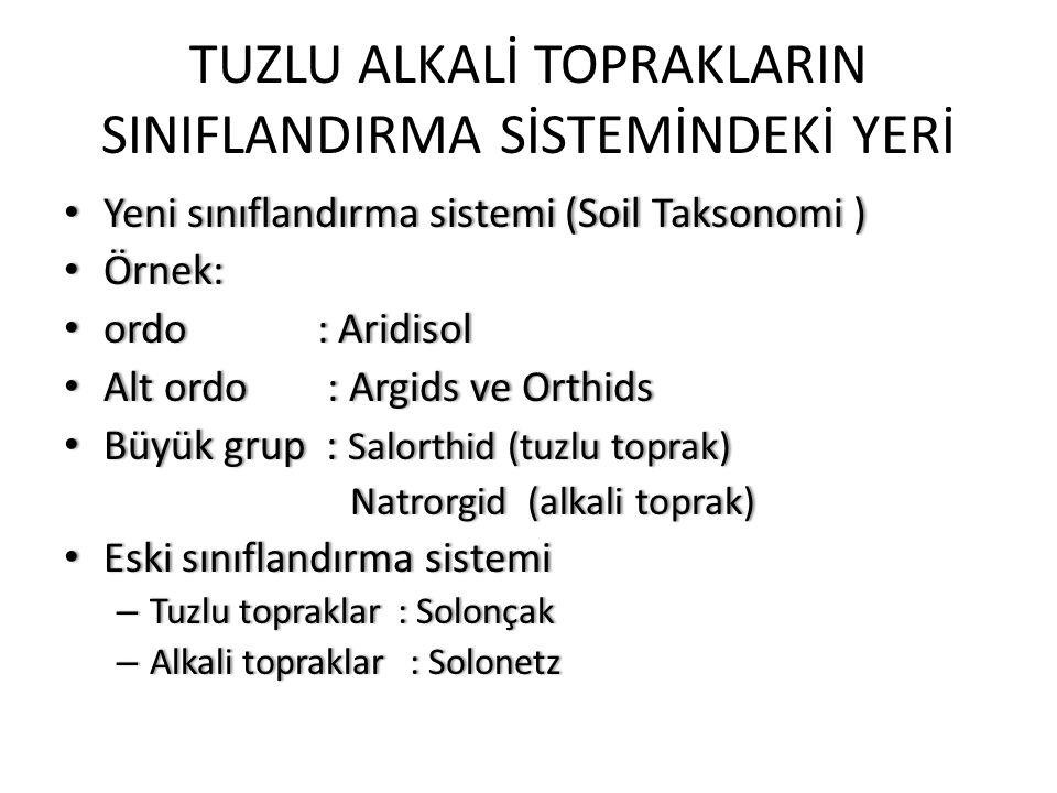 TUZLU ALKALİ TOPRAKLARIN SINIFLANDIRMA SİSTEMİNDEKİ YERİ Yeni sınıflandırma sistemi (Soil Taksonomi ) Yeni sınıflandırma sistemi (Soil Taksonomi ) Örnek: Örnek: ordo : Aridisol ordo : Aridisol Alt ordo : Argids ve Orthids Alt ordo : Argids ve Orthids Büyük grup : Salorthid (tuzlu toprak) Büyük grup : Salorthid (tuzlu toprak) Natrorgid (alkali toprak) Natrorgid (alkali toprak) Eski sınıflandırma sistemi Eski sınıflandırma sistemi – Tuzlu topraklar : Solonçak – Alkali topraklar : Solonetz